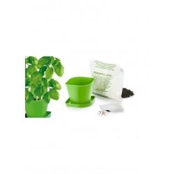 Souprava TESCOMA pro pěstování bylinek SENSE, bazalka